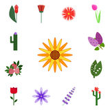 Icon set on a white background. Vector calendula, . Icons set blossom Royalty Free Stock Photography