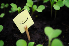 Icon smile Stock Images