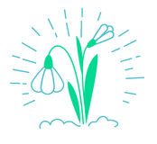 Icon of a snowdrop Stock Photography