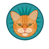 Icon striped red-headed cat Stock Image