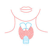 Icon of thyroid structure. Icon in the linear style Royalty Free Stock Photos