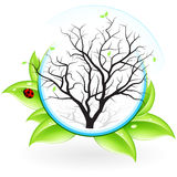 Icon with Tree Stock Photo