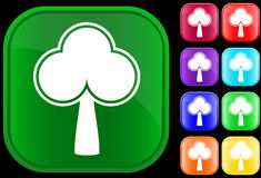 Icon of a tree. On shiny square buttons Stock Images
