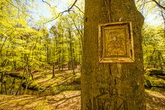 Icon on a tree in Poland Stock Images
