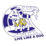 Live like a dog. Icon with very happy cute dog in sunglasses which stand on surf and surfing on big good wave. Summer time holiday Modern vector illustration vector illustration