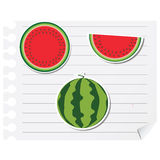 Icon watermelon on a blank notepad Stock Images