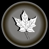 Icon white maple leave on grey plate. stock illustration
