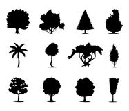 icon2 δέντρα Στοκ Εικόνες