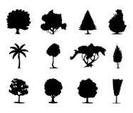 icon2 drzewa Zdjęcie Stock
