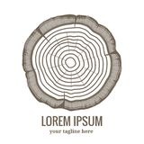 Icona annuale di logo degli anelli di crescita dell'albero Fotografia Stock