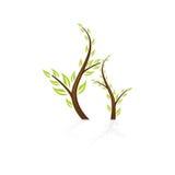 Icona astratta dell'albero Fotografie Stock Libere da Diritti