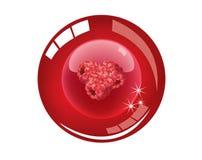 Icona colorata del bottone Immagine Stock