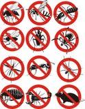Icona dei parassiti Immagini Stock