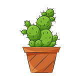 Icona del cactus royalty illustrazione gratis