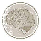 Icona del cervello Fotografia Stock Libera da Diritti