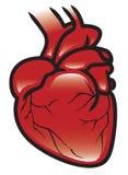 Icona del cuore Immagini Stock Libere da Diritti