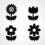 Icona del fiore Fotografia Stock