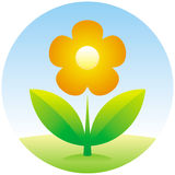 Icona del fiore di vettore Immagini Stock