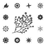 Icona del fiore Insieme dettagliato delle illustrazioni del fiore Icona premio di progettazione grafica di qualità Una delle icon Fotografie Stock Libere da Diritti