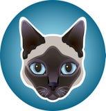 Icona del gatto siamese Fotografia Stock