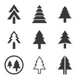 Icona del pino Immagine Stock