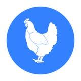 Icona del pollo nello stile nero isolata su fondo bianco Illustrazione di vettore delle azione di simbolo dell'uccello Fotografia Stock
