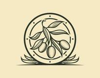 Icona del ramo di ulivo nel telaio stilizzato con le foglie illustrazione di stock