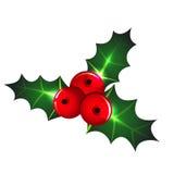 Icona del vischio di Natale Fotografie Stock