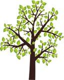 Icona dell'albero Fotografia Stock