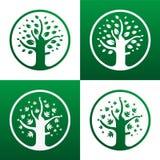 Icona dell'albero Fotografie Stock