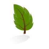 Icona dell'albero Fotografia Stock Libera da Diritti