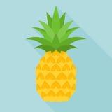 Icona dell'ananas Fotografie Stock Libere da Diritti