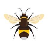 Icona dell'ape del miele Fotografie Stock Libere da Diritti