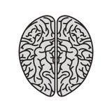 Icona dell'essere umano dell'organo del cervello illustrazione di stock