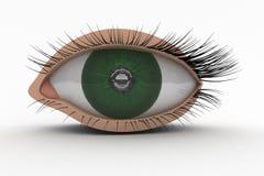 icona dell'occhio 3D Immagini Stock Libere da Diritti
