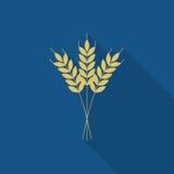Icona dell'orzo o del grano illustrazione vettoriale