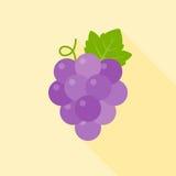 Icona dell'uva Fotografia Stock Libera da Diritti