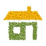 Icona della casa di Eco Fotografie Stock Libere da Diritti