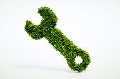 Icona della chiave di Eco Fotografia Stock