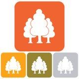 Icona della foresta decidua Fotografia Stock
