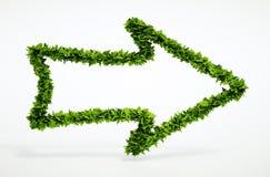 Icona della freccia a destra di Eco Immagini Stock Libere da Diritti