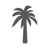 Icona della palma Illustrazione di concetto di vettore per progettazione Fotografia Stock
