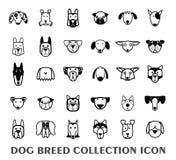 Icona della raccolta del cane della razza, vettore Immagine Stock Libera da Diritti