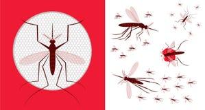 Icona della zanzariera Moltitudine di zanzara Immagini Stock