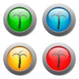 Icona delle palme sui bottoni di vetro Fotografia Stock