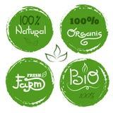 Icona di Eco con la foglia, bio- segno Insegna 100% di vettore naturale Immagine Stock