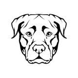 Icona di Rottweiler Fotografie Stock Libere da Diritti