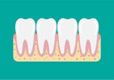 Icona di Tooths con gomma Immagine Stock Libera da Diritti