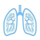 Icona di vettore dei polmoni illustrazione di stock