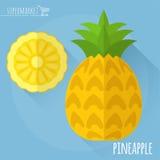 Icona di vettore dell'ananas illustrazione di stock